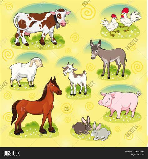 imagenes animales granja vector y foto animales de granja vector y bigstock