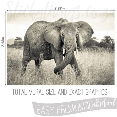 Elephant Wall Murals african elephant wall mural sepia elephant wallpaper