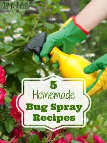 Natural Bug Spray For Plants 17 Best Ideas About Garden Bug Spray On Pinterest Insect