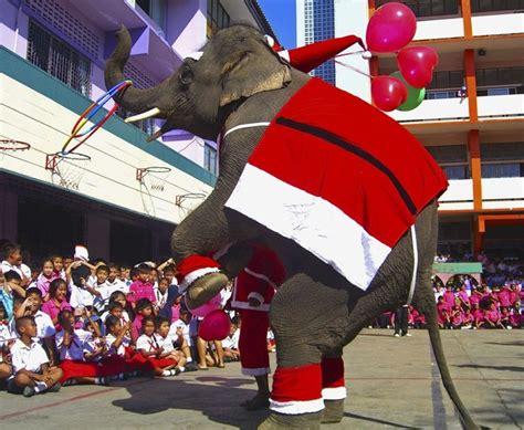 thailand christmas    solidarity  catholics  thailand