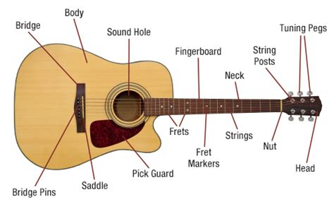 wiring diagram for guitars capacitor for guitar wiring