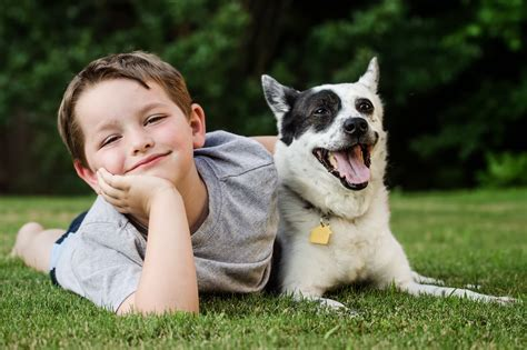 dogs that are with children plexidor pet doors children and dogs tips to keep interaction safe