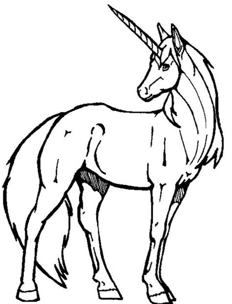 realistic unicorn coloring page cute unicorn drawing clipart panda free clipart images