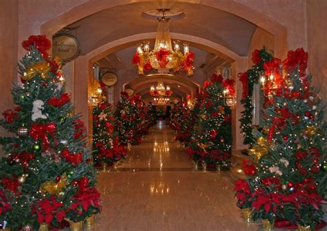 christmas tree lane at the royal sonesta hotel new orleans