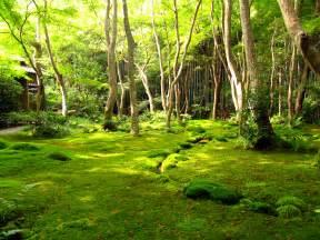 まみ jardins japonais