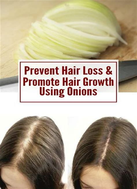 onion hair style 17916 best images about hairstyles for long hair on