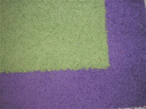 Purple And Lime Green Area Rugs 4x6 Purple And Lime Green K Ireland Shag Border Rug Ebay