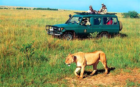 Syari Kanita kenia safari i plaża kenia ecco travel
