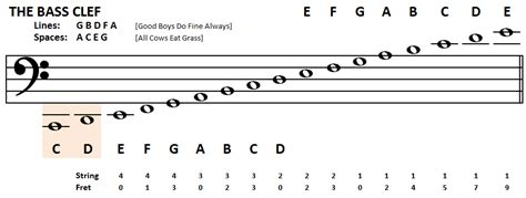 bass clef notes playing bass learn to read bass notes the bass clef