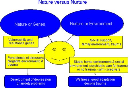 exle of nature vs nurture image gallery nurture nature exles