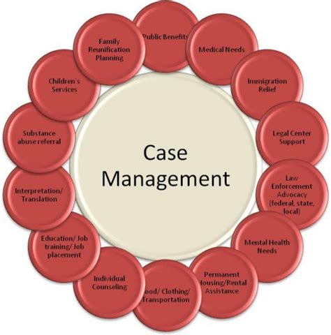 Rn Job Description Resume by Case Management 101 The Basics