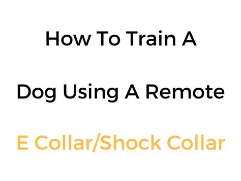 how to a with a remote collar how to a with a shock collar remote e collar info guide