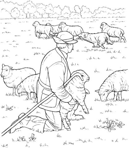 sheep herd coloring page 301 moved permanently