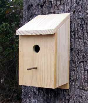 bluebird house pattern swing bed patterns free woodworking plans bird house