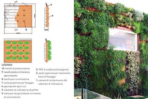 strutture per giardini verticali tetti verdi e giardini verticali idee green per