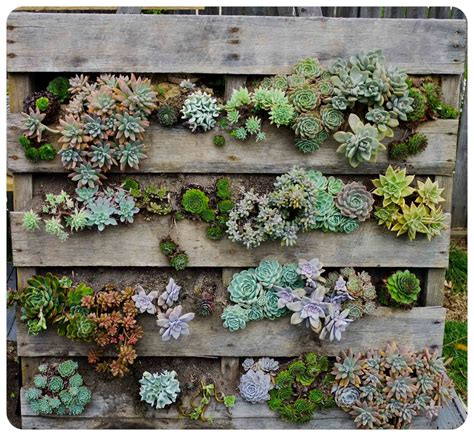 The Urchin Collective Diy Recycled Pallet Vertical Wall Garden Diy