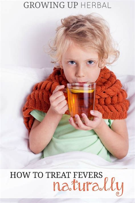7 Ways To Soothe A Baby by How To Treat Fevers Naturally Growing Up Herbal Learn