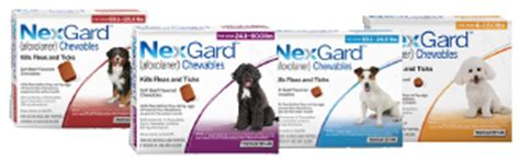 nexgard deaths about nexgard kills fleas and ticks in 24 hours