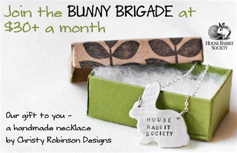 rabbit house society join the bunny brigade house rabbit society