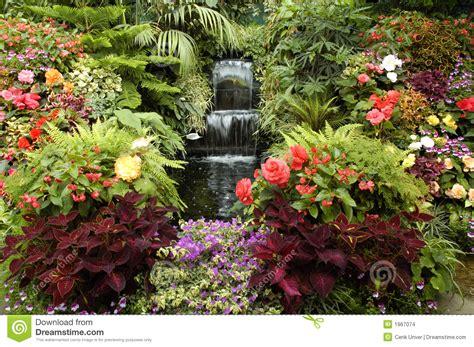 tuin van edden de tuin van eden stock afbeeldingen beeld 1967074