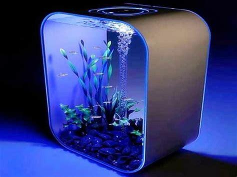 am駭ager un petit bureau aquarium design le confort pour vous et vos petits poissons