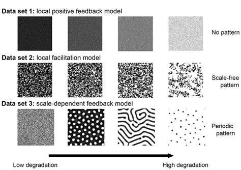 Spatial Pattern Types | spatial indicators