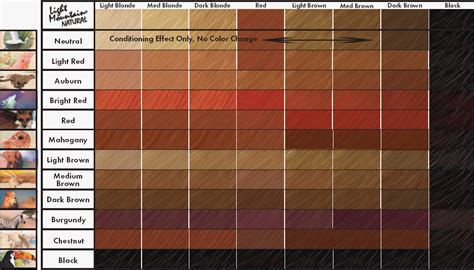 ginger hair chart light mountain natural color chart henna for hair