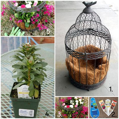 Bird Cage Planters by How To Plant A Birdcage Pink Polka Dot Creations