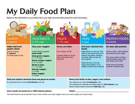 example of the daily food plan you get via the usda choose