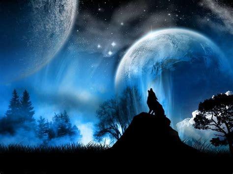 fondos de pantalla de lobos en movimiento fondos de pantalla galer 237 a de im 225 genes fondos de pantalla de lobos
