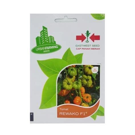 Harga Benih Terong Ungu Antaboga benih tomat rewako f1 60 biji panah merah bibitbunga