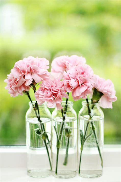 Which Flowers Last The In A Vase by Best 25 Pink Centerpieces Ideas On Carnation