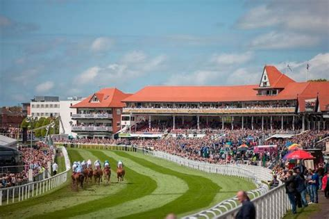 chester races 2016 what will your money buy you chester chronicle