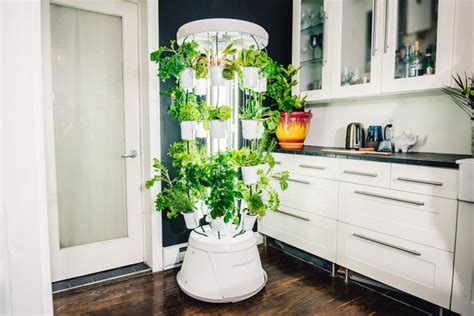 introducing nutritower  advanced hydroponic indoor