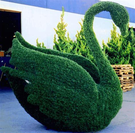 swan topiary topiary swan swan lake