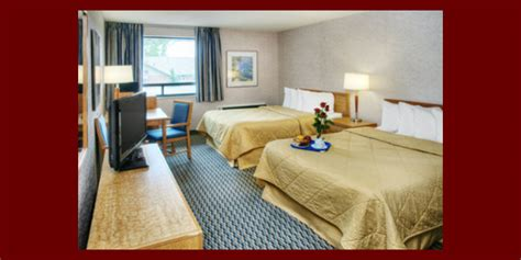 comfort inn pickering need a hotel in pickering comfort inn pickering hotel