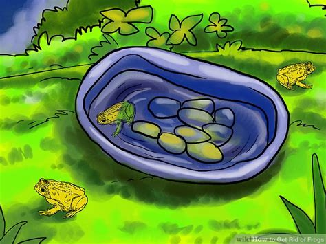 how to get rid of frogs in backyard how to get rid of frogs with pictures wikihow