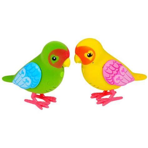 images    pets birds  pinterest