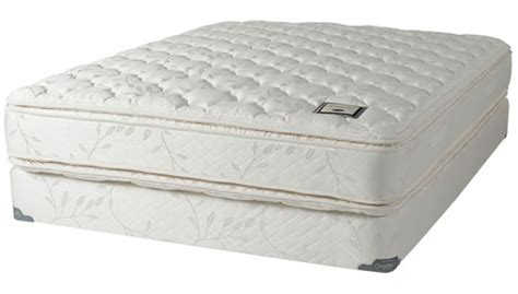 Shifman Mattress Prices by Collections Shifman Mattresses
