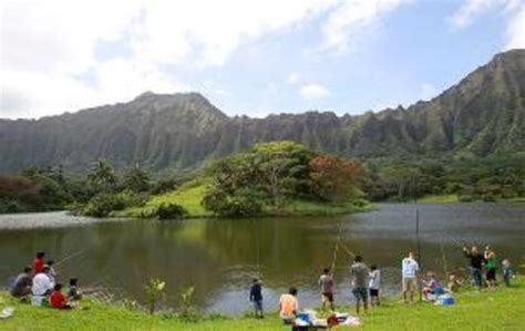 Hoomaluhia Botanical Garden Fishing with Fresh Fish For Free Picture Of Hoomaluhia Botanical Gardens Kaneohe Tripadvisor