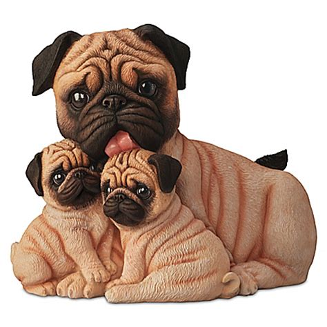 pug canada pug canada s guide to dogs
