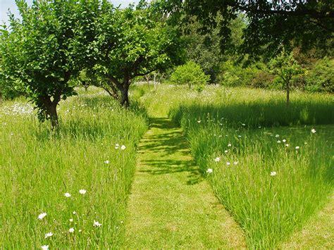 Orchard Garden by National Gardens Scheme 17th September 2013 Biddenham