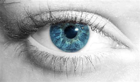 wallpaper blue eyes hd wallpaper collection for your computer and mobile phones