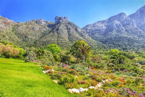 Kirstenbosch National Botanical Gardens Cape Town South Botanical Gardens Cape Town