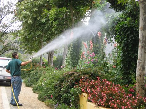 tree spray does ca hoa to advise members about pest treatments