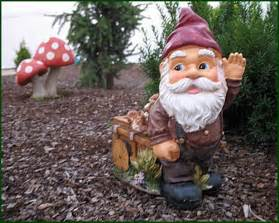 Gnomes Gnome Pictures Pics Images And Photos For Inspiration