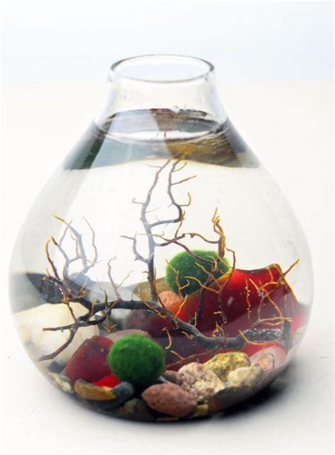 best fan for aquarium 266 best marimo images on pinterest