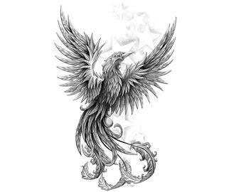 black and grey phoenix tattoo designs black and grey phoenix art drawings characters