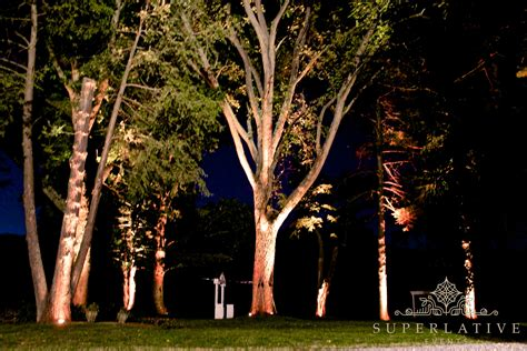 Outdoor Wireless Uplights Illuminate The Outdoors Lights Trees
