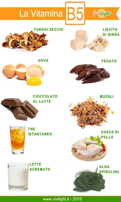 acido pantotenico alimenti vivilight 187 vitamina b5 tutte le sue propriet 224 ed cibi